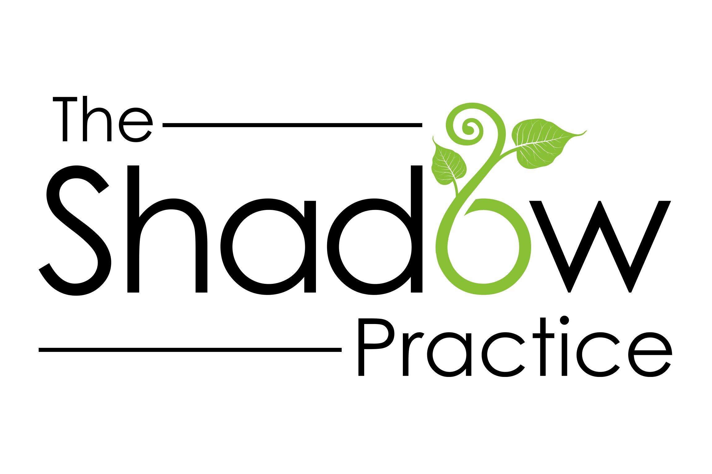 The Shadow Practice